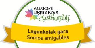 Euskadi Lagunkoia, elegida como modelo de acción para la próxima Conferencia sobre envejecimiento